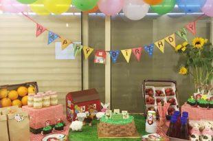 עיצוב שולחן יום הולדת חוות החיות