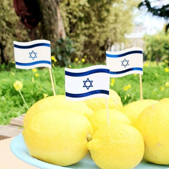 טיפים ורעיונות לפיקניק ישראלי ביום העצמאות - טופרים דגל ישראל